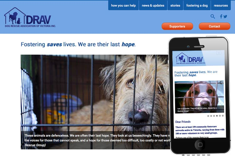Image of Living Now website